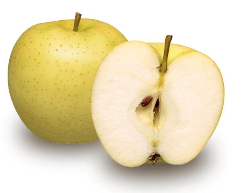 日本青森蘋果 早生種 黃王